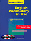 vocabulary in use key